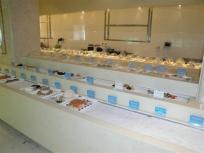 冷库设计安装浅论速冻冷库海鲜的营养价值